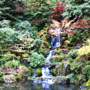 The swim life page 2 - Portland japanese garden admission ...